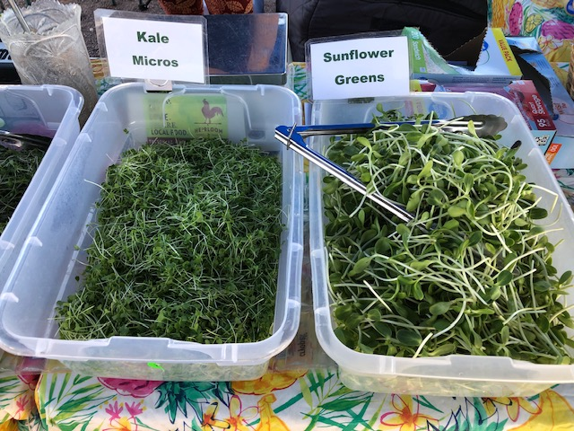 Kale Micros, Sunflower Greens
