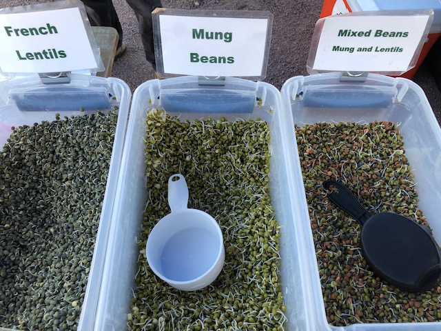 Mung Beans, French Lentils, Mixed Beans