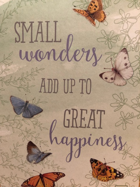 Small Wonders add up to GREAT happiness