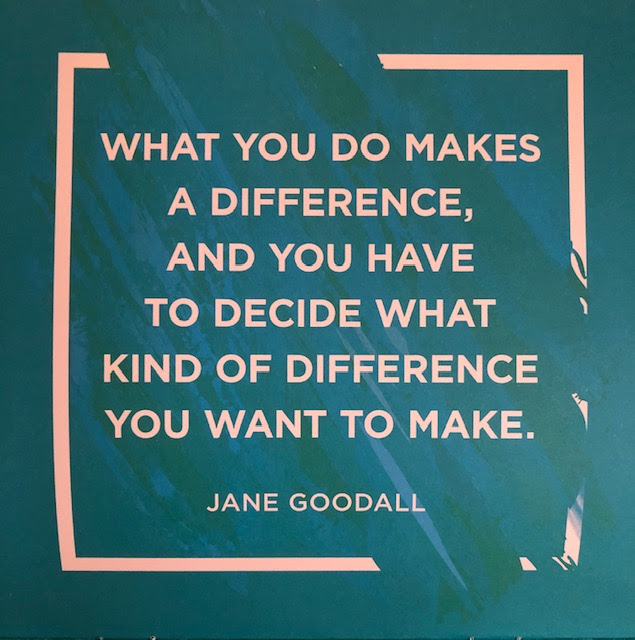 """What you do makes a difference, and you have to decide what kind of difference you want to make."" - Jane Goodall image"